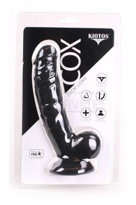 Kiotos COX 008
